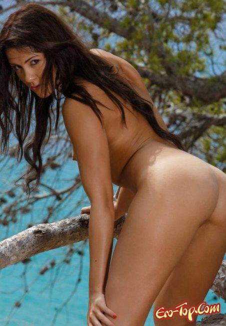 Загорелая брюнетка показала свои прелести. Фото голых брюнеток